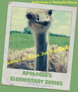 Apologia's Exploring Creation elementary series is fabulous.