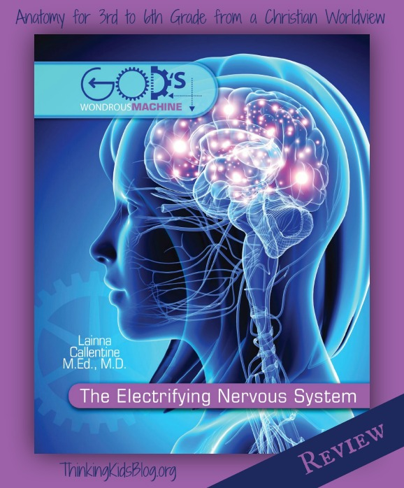 The Electrifying Nervous System by Dr. Laina Callentine ~ Anatomy for 3rd - 6th grade from a Christian worldview