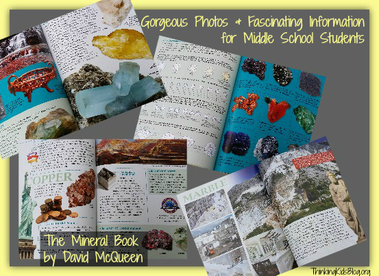 Peek inside The Mineral Book by David McQueen!