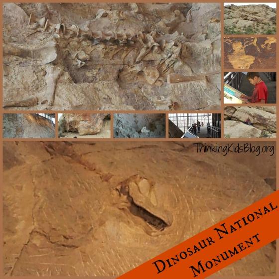 Dinosaur National