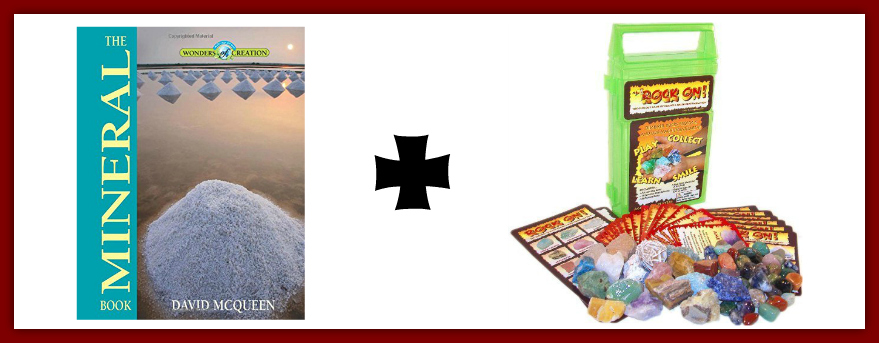 Check out these great Creation Science Read & Play Kit ideas!