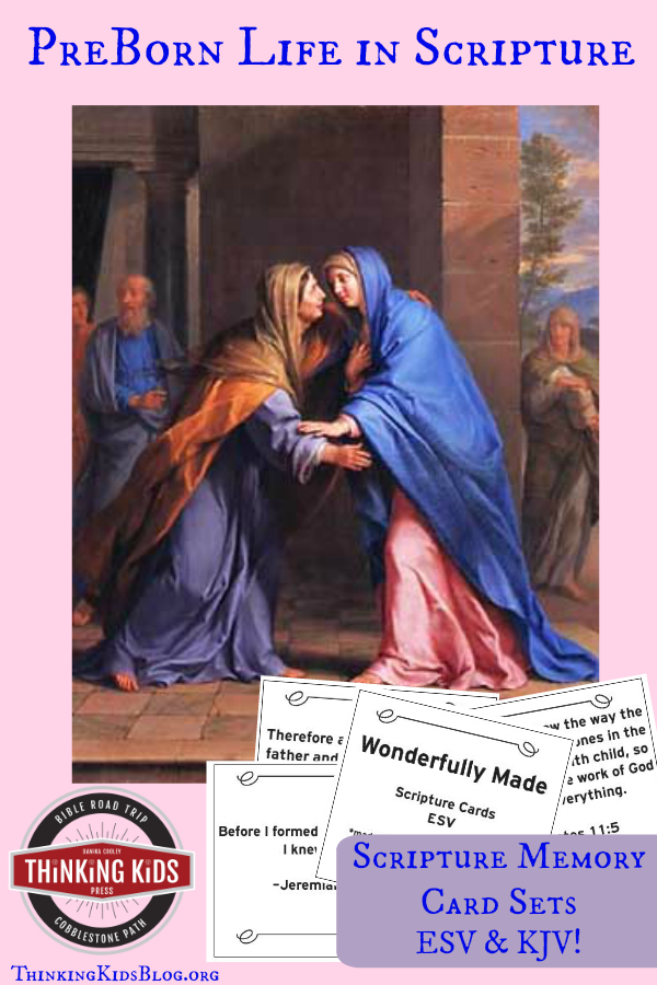 PreBorn Life in Scripture ~ with Free Scripture Memory Card Sets ~ ESV & KJV. We're celebrating Wonderfully Made: God's Story of Life from Conception to Birth is a sweet Scripture and science based picture book for ages 5-11.