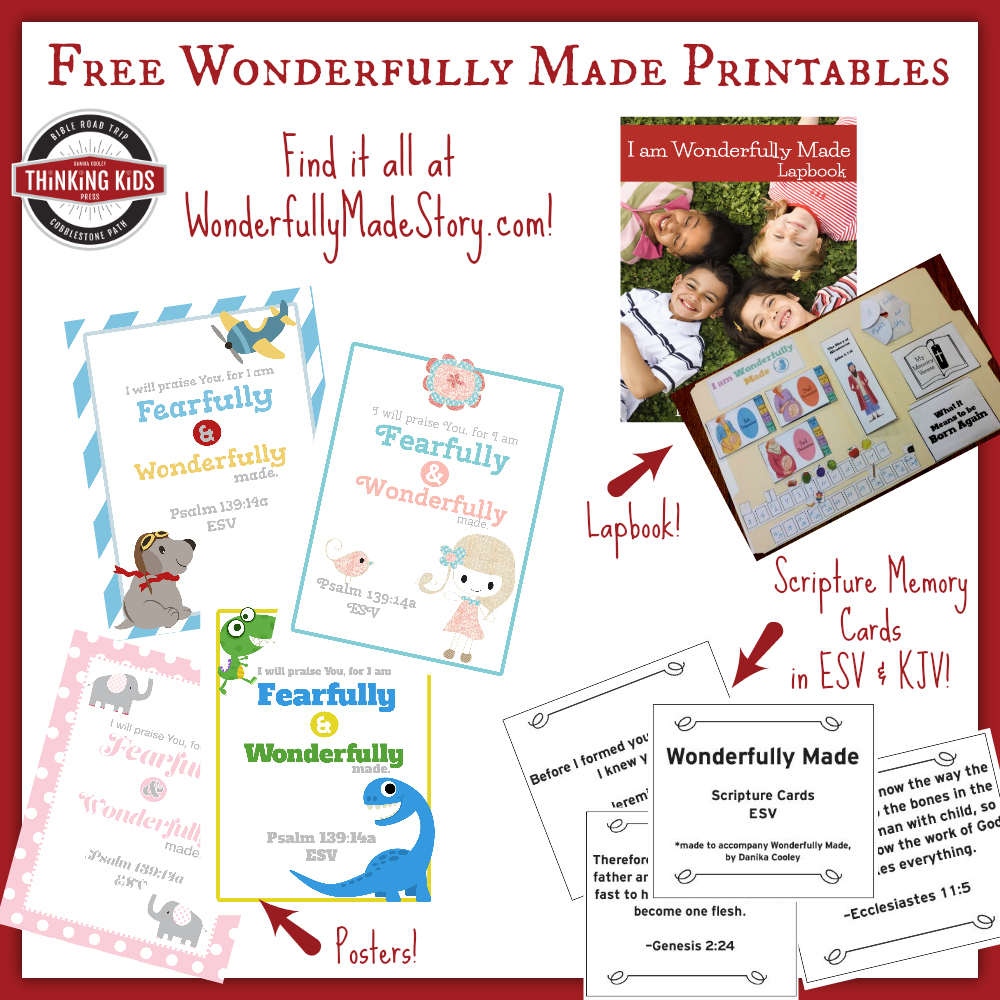 Check out the free Wonderfully Made printables available at Thinking Kids! Posters, Scripture memory cards, and a lapbook! Teach your kids what the Bible AND science say about life in the womb!